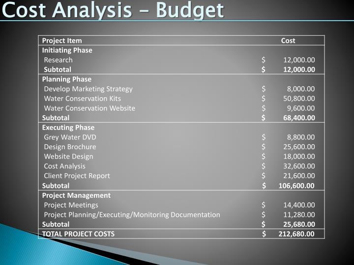Cost Analysis – Budget