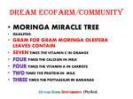 dream ecofarm community2