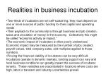 realities in business incubation