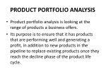 product portfolio analysis1
