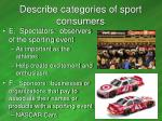 describe categories of sport consumers1