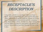 receptacle s description