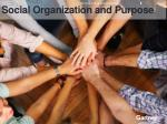 social organization and purpose