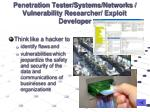 penetration tester systems networks vulnerability researcher exploit developer
