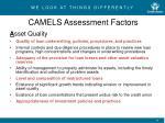 camels assessment factors1