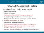 camels assessment factors4