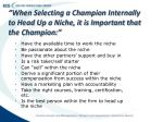 when selecting a champion internally to head up a niche it is important that the champion