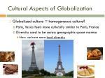 cultural aspects of globalization2