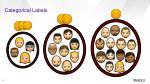 categorical labels
