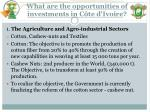 what are the opportunities of investments in c te d ivoire1