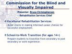 commission for the blind and visually impaired