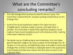 what are the committee s concluding remarks