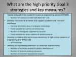 what are the high priority goal 3 strategies and key measures