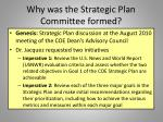 why was the strategic plan committee formed