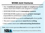 wosb joint ventures
