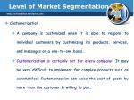 level of market segmentation9