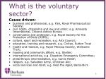 what is the voluntary sector