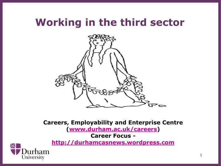 working in the third sector n.
