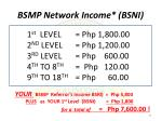 bsmp network income bsni