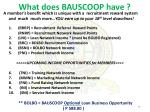 what does bauscoop have
