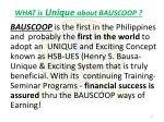 what is unique about bauscoop