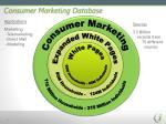 consumer marketing database
