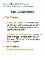 state and local public finance lecture 9 sales and income taxes19