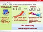 avaya portfolio serves the market based on varying customer types and needs