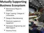 mutually supporting business ecosystem