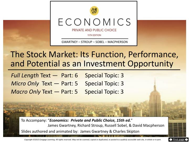 the stock market its function performance and potential as an investment opportunity n.