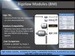 bigelow modules bm