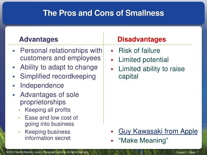 The Pros and Cons of Smallness