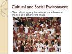 cultural and social environment1