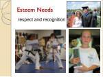 esteem needs