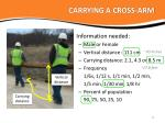 carrying a cross arm1