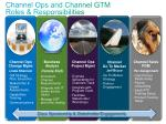 channel ops and channel gtm roles responsibilities