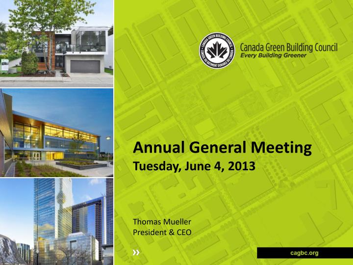 annual general meeting tuesday june 4 2013 n.