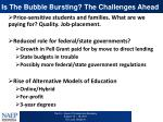 is the bubble bursting the challenges ahead