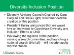 diversity inclusion position