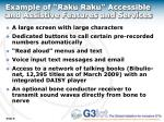 example of raku raku accessible and assistive features and services