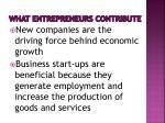 what entrepreneurs contribute