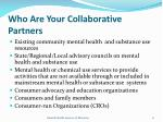 who are your collaborative partners