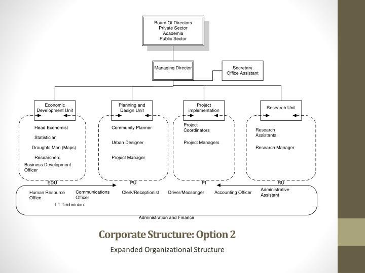 Corporate Structure: Option 2