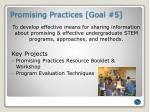 promising practices goal 5