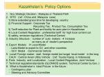 kazakhstan s policy options