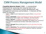 cmm process management model