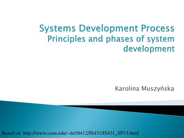 systems development process principles and phases of system development n.