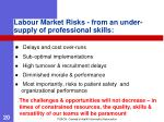 labour market risks from an under supply of professional skills