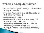 what is a computer crime