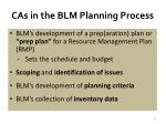 cas in the blm planning process1